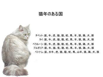 runa-049.jpg